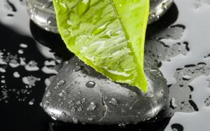 5 remèdes naturels pour être soulagé des douleurs à la nuque
